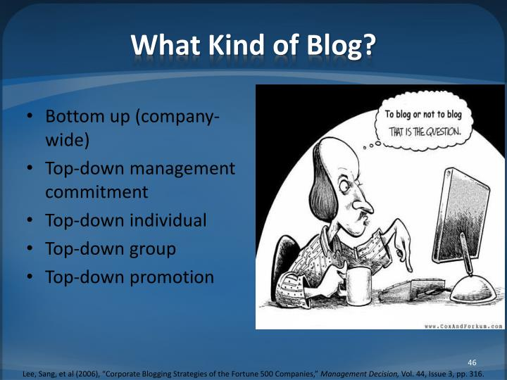 What Kind of Blog?