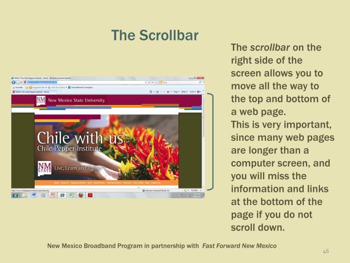 The Scrollbar