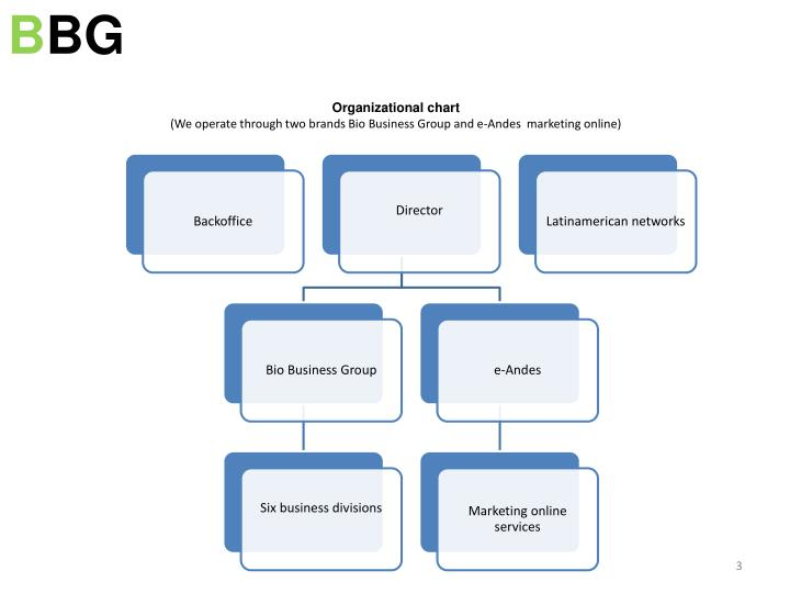 Organizational chart we operate through two brands bio business group and e andes marketing online