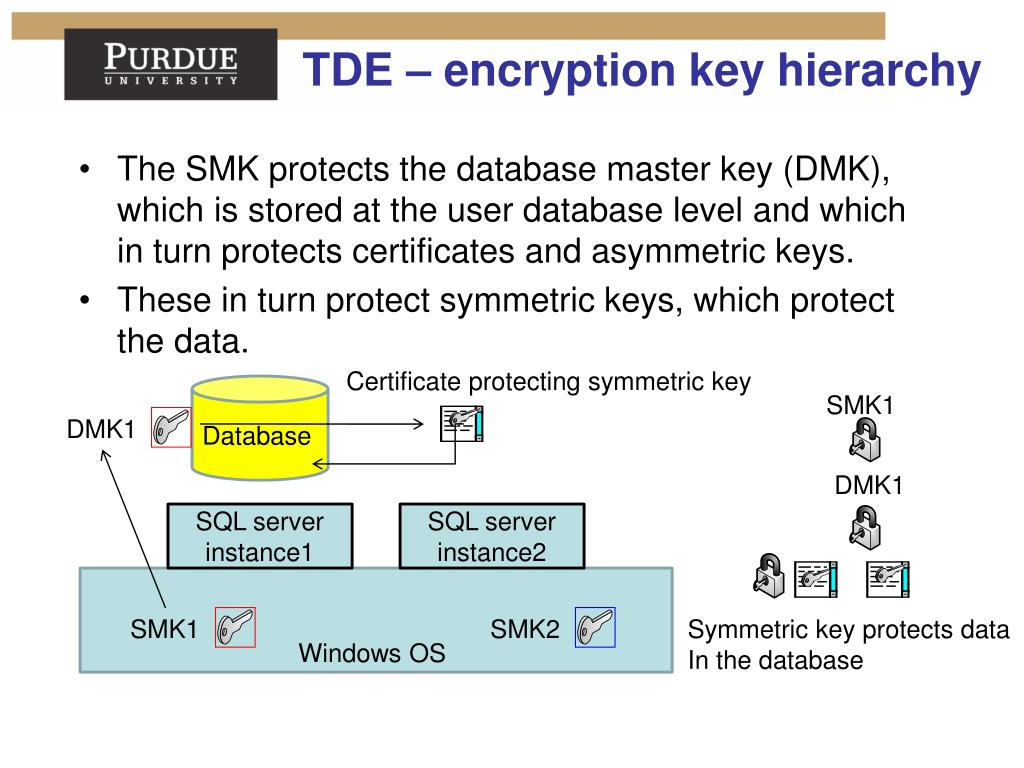 PPT - Database Security Lecture 14 Database Encryption
