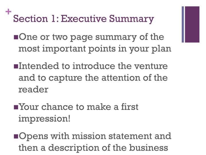 Section 1 executive summary