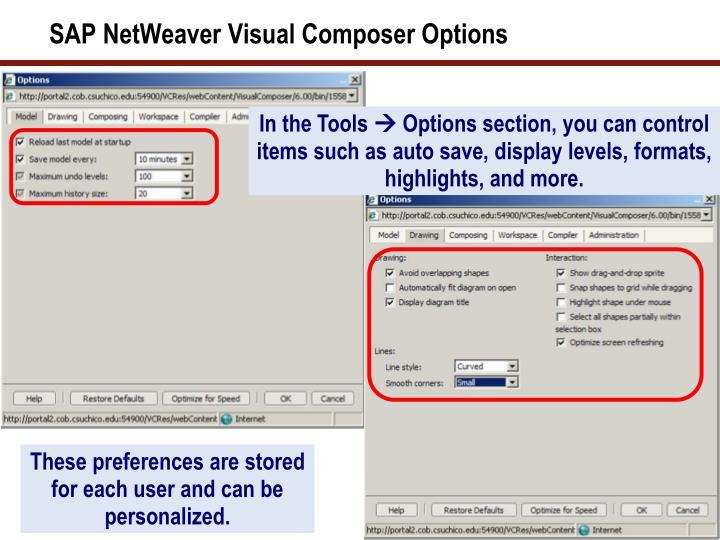 SAP NetWeaver Visual Composer Options