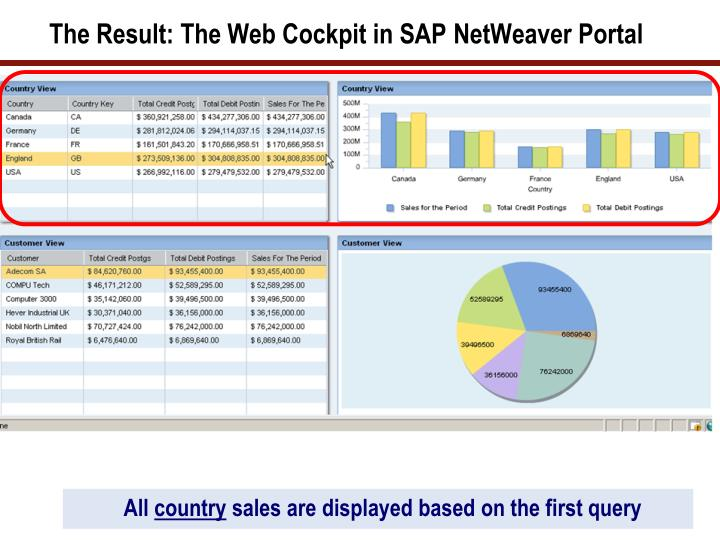 The Result: The Web Cockpit in SAP