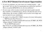 a few bgp related involvement opportunities