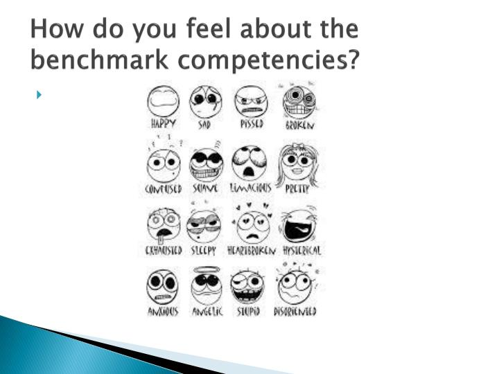 How do you feel about the benchmark competencies?