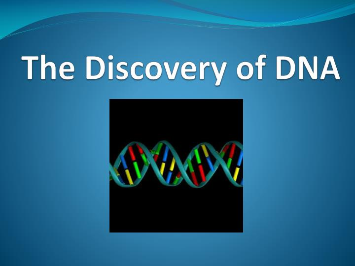 the discovery of dna n.