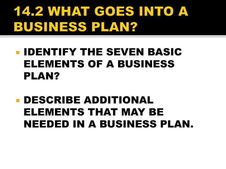 14.2 WHAT GOES INTO A BUSINESS PLAN?