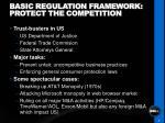 basic regulation framework protect the competition