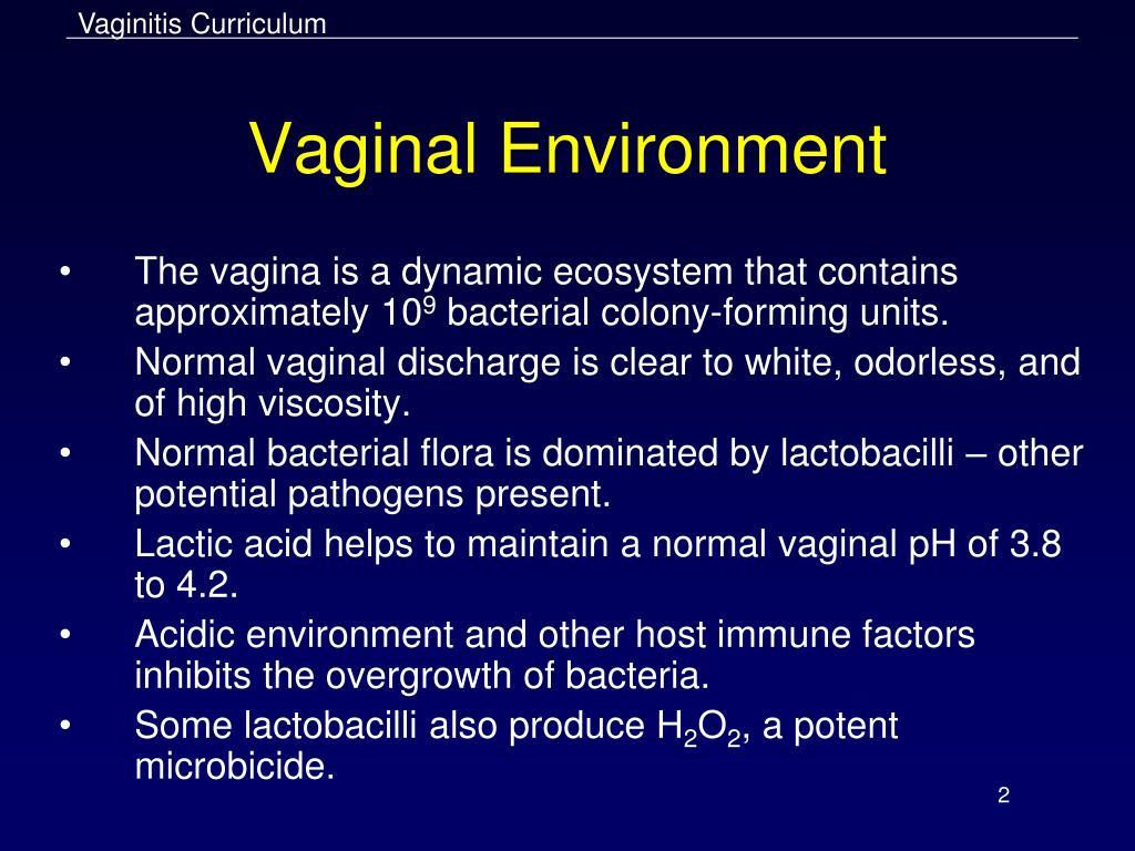 PPT - Vaginitis PowerPoint Presentation - ID:1693090