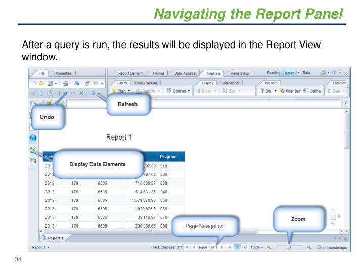 Navigating the Report Panel