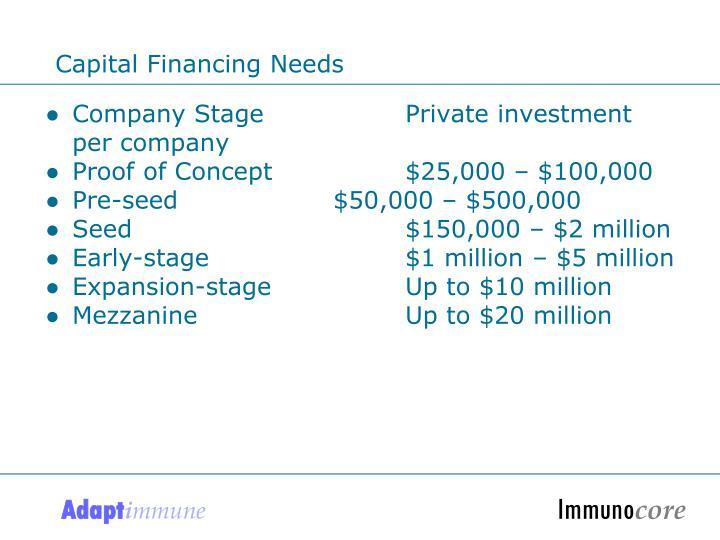 Capital Financing Needs