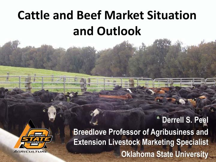 cattle and beef market situation and outlook n.