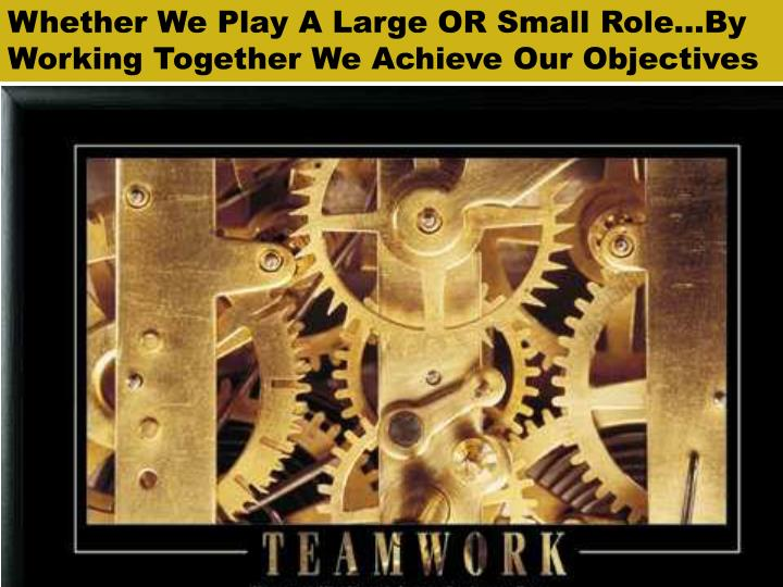 Whether We Play A Large OR Small Role…By Working Together We Achieve Our Objectives