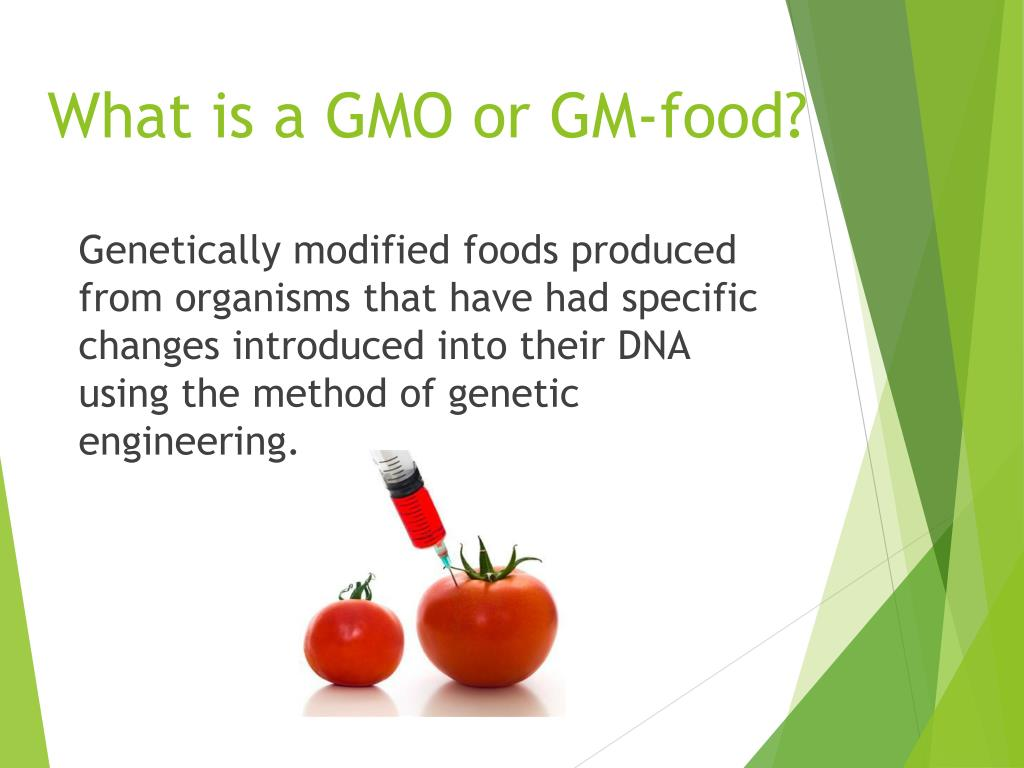 PPT - GENETICALLY MODIFIED ORGANISMS PowerPoint Presentation
