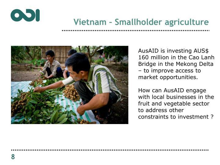 Vietnam – Smallholder agriculture