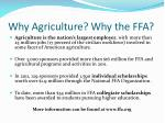 why agriculture why the ffa