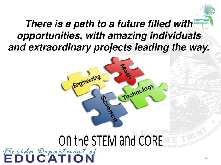 On the STEM and CORE