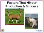 factors that hinder production success