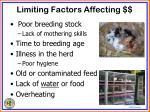 limiting factors affecting1