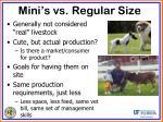 mini s vs regular size