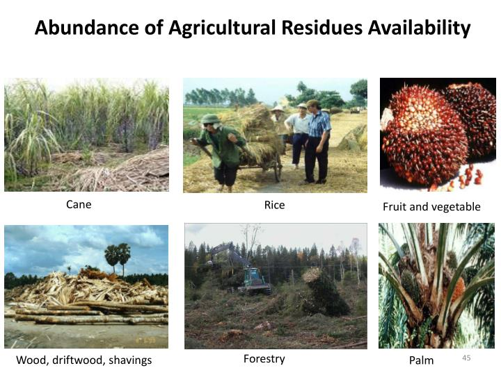Abundance of Agricultural Residues Availability