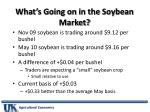 what s going on in the soybean market1