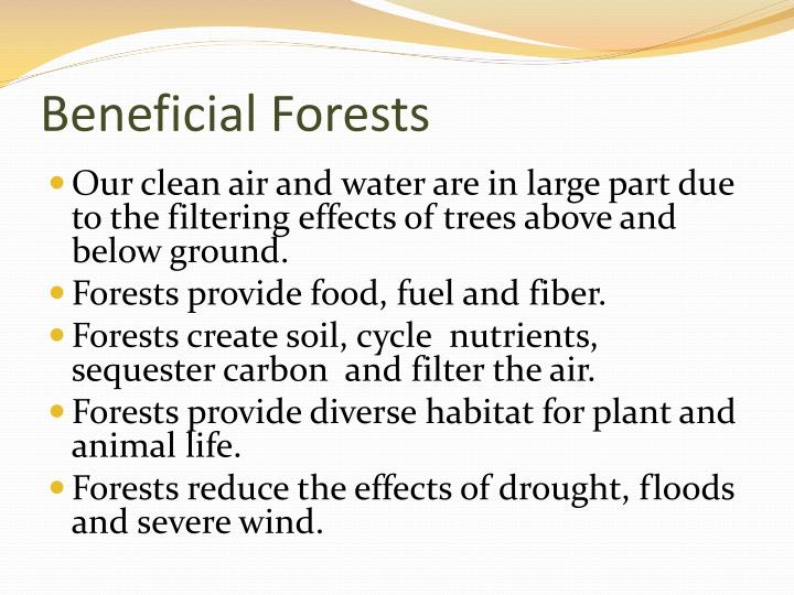 Beneficial Forests