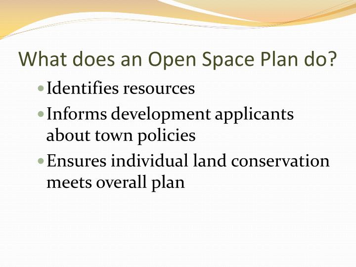 What does an Open Space Plan do?