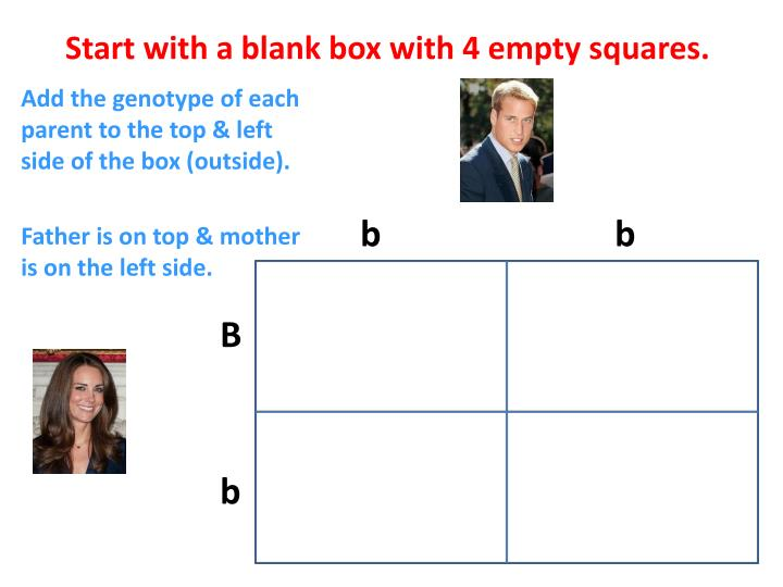 Start with a blank box with 4 empty squares.
