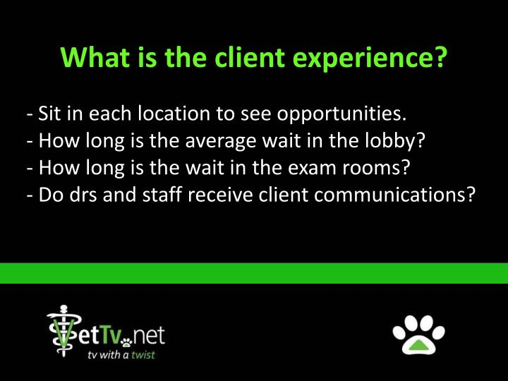 What is the client experience?