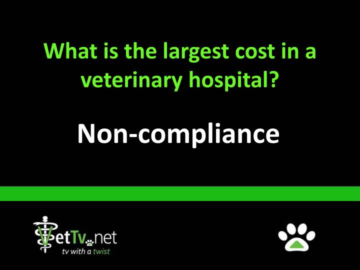 What is the largest cost in a veterinary hospital?