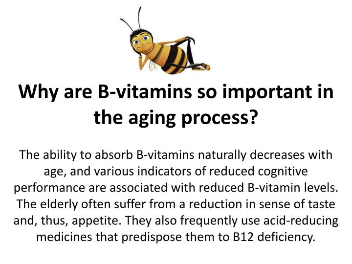 Why are B-vitamins so important in the aging process?