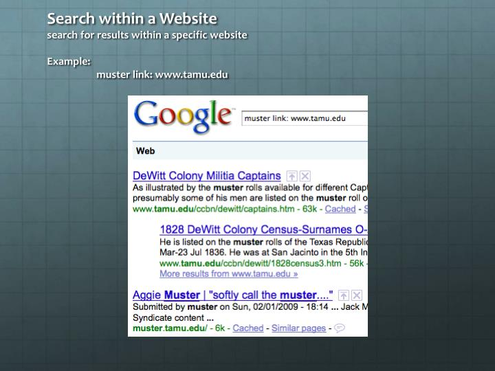 Search within a Website
