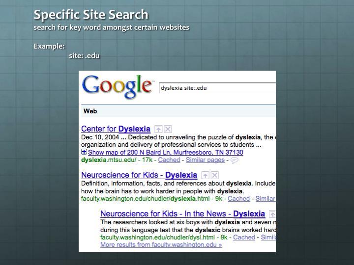 Specific Site Search