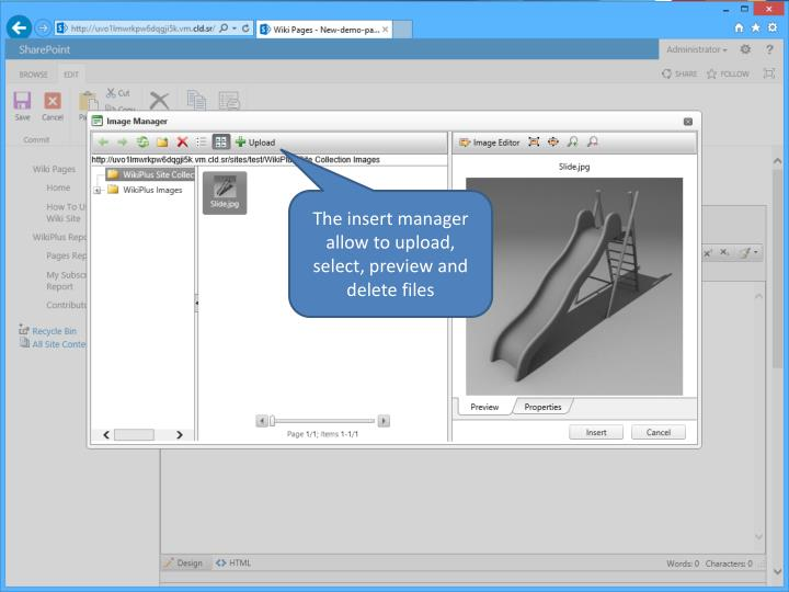The insert manager allow to upload, select, preview and delete files