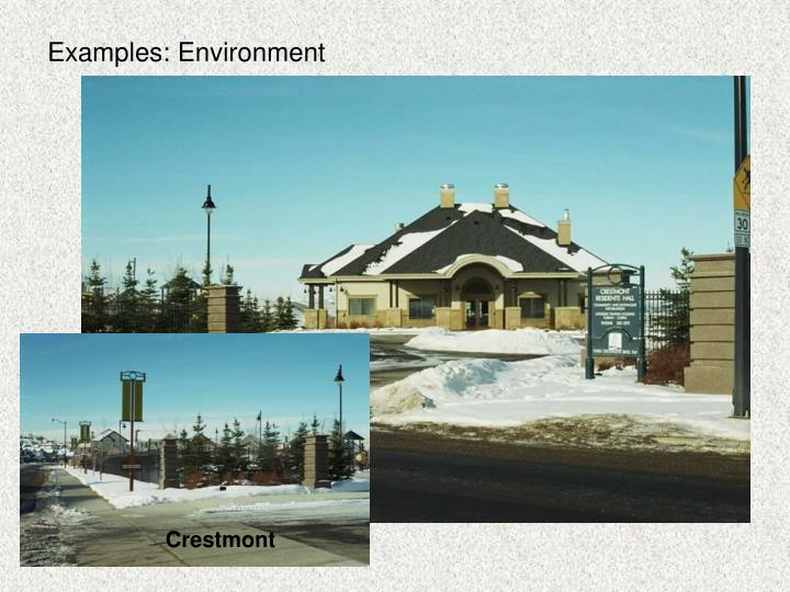Examples: Environment