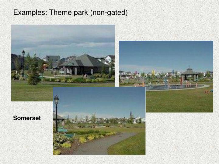 Examples: Theme park (non-gated)