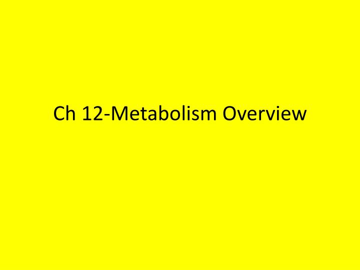 ch 12 metabolism overview n.