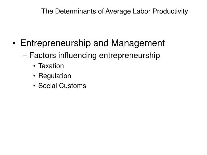 The Determinants of Average Labor Productivity