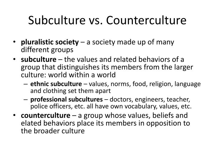 subculture and counterculture