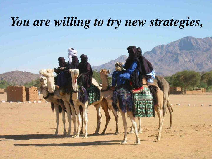 You are willing to try new strategies,