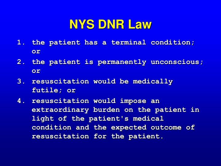 NYS DNR Law
