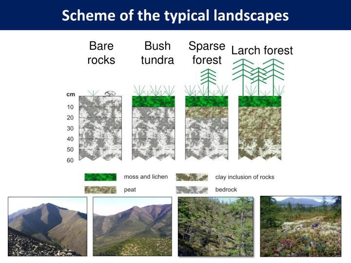 Scheme of the typical landscapes