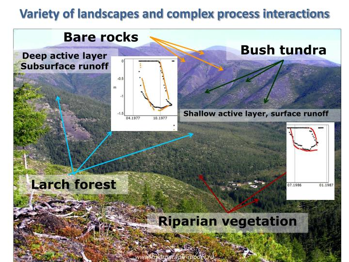Variety of landscapes and complex process interactions