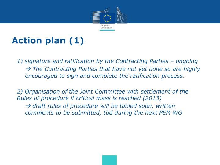 Action plan (1)
