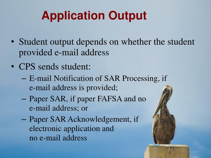 Application Output