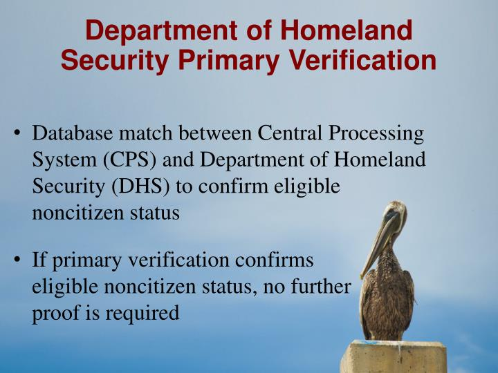 Department of Homeland Security Primary Verification