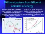 different partons lose different amounts of energy