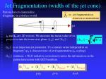 jet fragmentation width of the jet cone