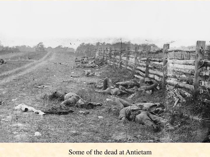Some of the dead at Antietam